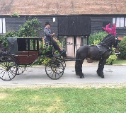 Horse and Carriage Hire in Mid Wales